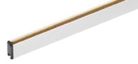 eltex-elektrostatik小型充电 棒 R120
