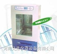LHP-250E智能恒温恒湿箱 LHP-250E
