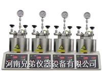 SLP450平行反应釜 微型高压反应釜 SLP450