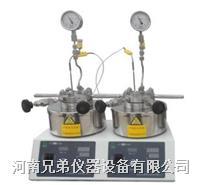 SLP225平行反应釜  新型高效反应釜 SLP225