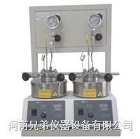 SLP210平行反应釜 微型高压反应釜 SLP210