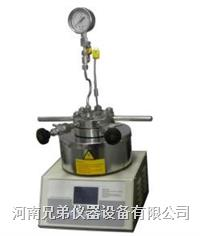10ML小型反应釜 微型高压反应釜 SLM-10