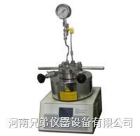 SLM250小型高压反应釜 250ml SLM250