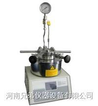 100ML小型反应釜 磁力反应釜 SLM-100