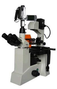 BM-38XV摄像倒置荧光显微镜/BM-38XV/荧光显微镜价格