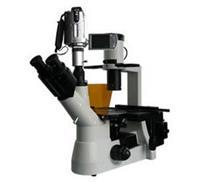 BM-38XB倒置荧光显微镜/生物显微镜/显微镜价格/显微镜生产厂家 BM-38XB
