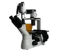 BM-38XBC电脑型倒置荧光显微镜/生物显微镜/显微镜价格/显微镜生产厂家 BM-38XBC