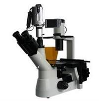 BM-38XBS数码倒置荧光显微镜/生物显微镜/显微镜价格/显微镜生产厂家 BM-38XBS