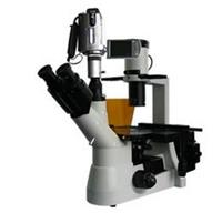 BM-38XBV摄像倒置荧光显微镜/生物显微镜/显微镜价格/显微镜生产厂家 BM-38XBV