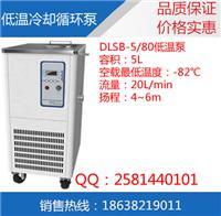 低温泵生产厂家 DLSB-5/80低温冷却循环泵价格