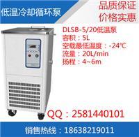 低温泵生产厂家 DLSB-5/20低温冷却循环泵价格
