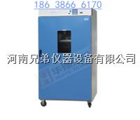 DGG9030AD立式电热鼓风干燥箱 DGG9030AD