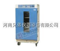 LH-80种子老化箱 LH-80