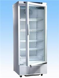 -25℃ DW-YL450中科美菱超低温系列 超低温冰箱 低温柜 DW-YL450