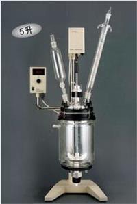 厂家直销RV-605真空反应器 双层夹层套式真空反应器 RV-605
