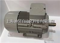 西门子进口电机维修 西门子进口电机维修