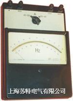 D3-HZ,D65-HZ0.2級 電動系頻率表