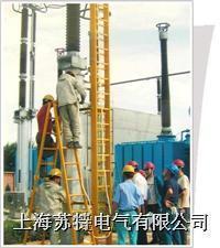 ST检修专用梯 ST