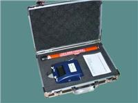 STSJS-6绝缘子绝缘电阻测试仪 STSJS-6
