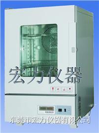 培养箱温湿度培养箱 HL-RH-80S