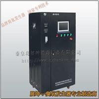 农村饮用水工程臭氧发生器