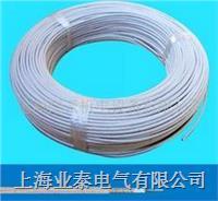 3172硅橡胶绝缘电线 YT