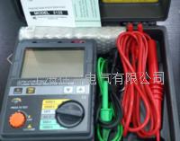3125型数字式绝缘电阻测试仪   3125型