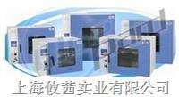 DHG-9203A鼓风干燥箱 DHG-9203A