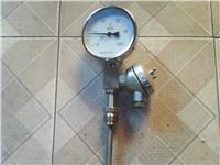 带热电偶/热电阻双金属温度计 WSSE-401  WSSP-401