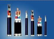 硅橡胶绝缘电机专用•引接线