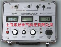 可调数字兆欧表 LYZT-II