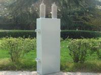 高压滤波电容 LYDR
