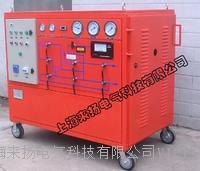 SF6气体抽真空及回充装置 LYGS3000