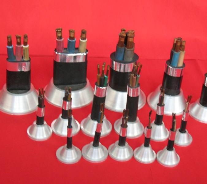 MHYV2x2x0.8矿用通信电缆直销