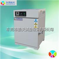 电热鼓风干燥箱 ST-216