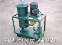 齿轮油真空滤油机 GDCL