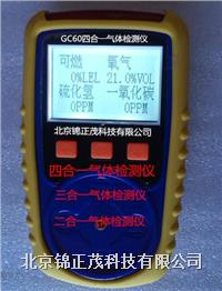 GC60单一气体检测仪  GC60单一气体检测仪