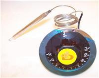 温控器|水温表