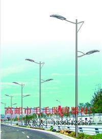 LED路灯9