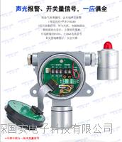 在线式三氟化氮气体检测仪生产厂家