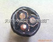 高压塑料电缆 YJV22  3*70
