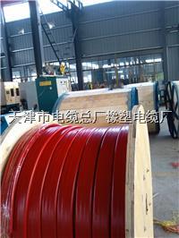 YGCB-HF46R硅橡胶护套扁电缆 YGCB-HF46R