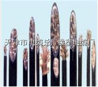 天津小猫牌西门子线 6xv1830-OEH