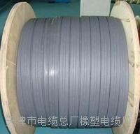 天津小猫牌CEFRB 3*25电缆 CEFRB 3*25