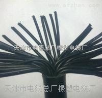 天津小猫牌JSHF-30电缆 JSHF-30    16*1.5