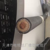 天津小猫牌UGEFP电缆 UGEFP 1*-50