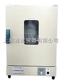 101型电热鼓风干燥箱 101-0AB
