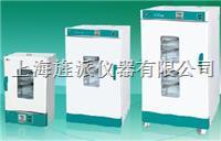 电热恒温鼓风干燥箱 DHG9240B