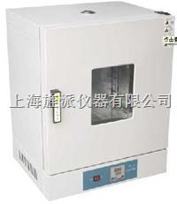 202型电热恒温干燥箱 202-0AB