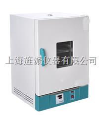 202-2S立式电热恒温干燥箱 202-2S